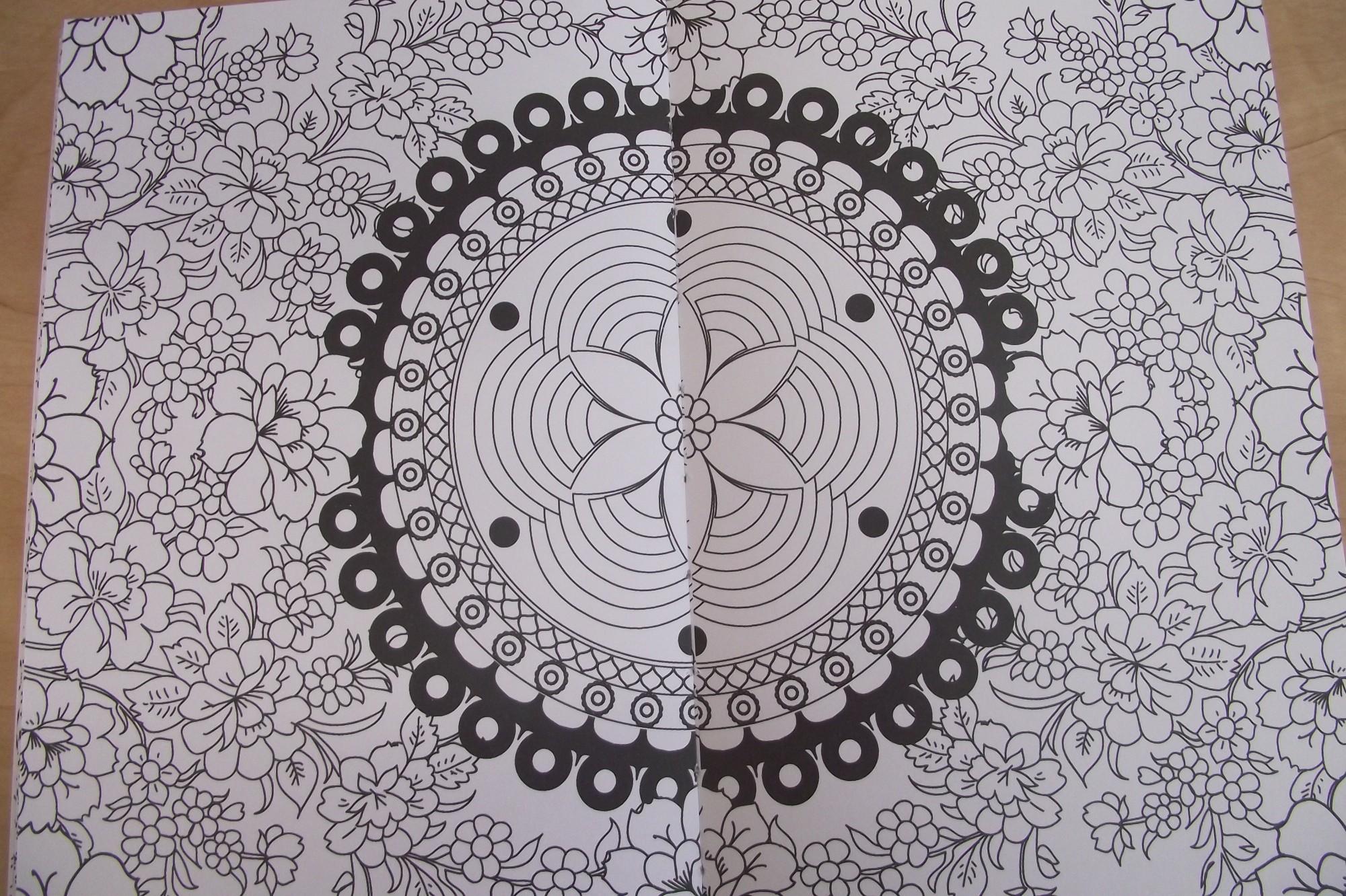 coffret de crayons de couleurs un livre colorier anti stress mandalas - Livre De Coloriage Anti Stress